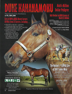 Duke's Speedhorse page